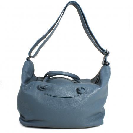 CHAMELEON <br> blue grey